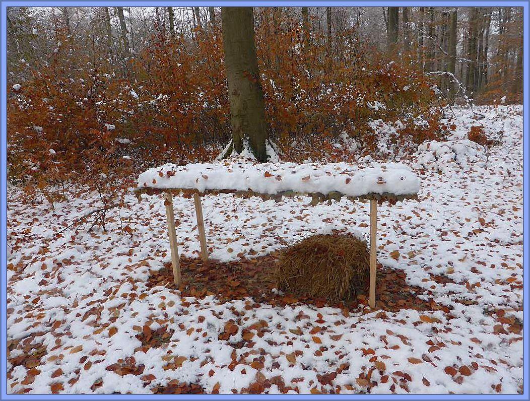 Und ein Tischlein deck dich, reich gedeckt mit Schnee und etwas Stroh darunter