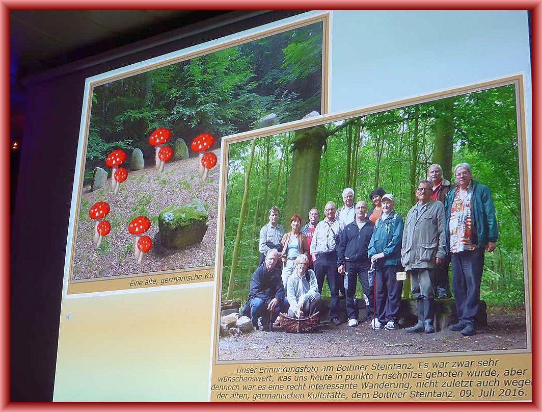 Jede unserer offiziellen Veranstaltung fand darin berücksichtiguung. Hier war es unsere öffentliche Pilzlehrwanderung zum Boitiner Steintanz im zurückliegenden Sommer. Die germanische Kulzstätte scheinen auch die Fliegenpilze in ihrer eigenschaft als Glücksbringer zu lieben und Tanzen hier im Hexenring.!