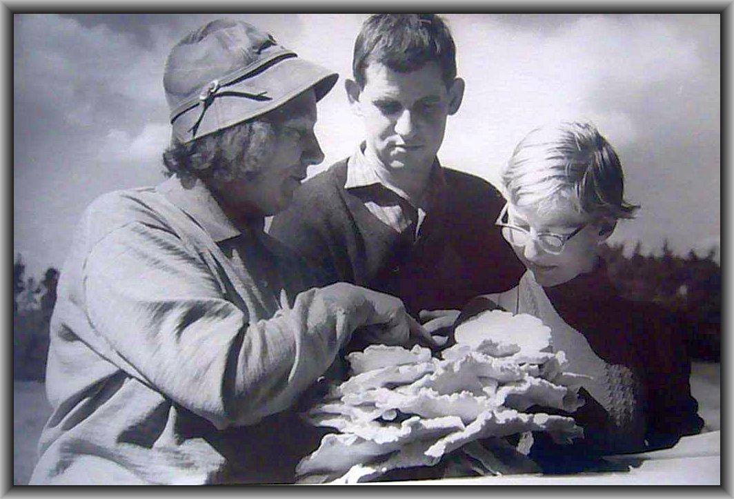 Fundbesprechung während einer öffentlichen Pilzlehrwanderung in den 1950er Jahren. Rechts die damals stadtbekannte Pilzfrau Annalotte Heinrich. In der Mitte unser dienstältester, heute noch aktiver Pilzfreund Hans - Jürgen Willsch. Das junge Mädchen rechts ist leider unbekannt.