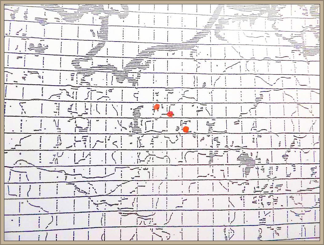 Cystoderma terrei (Br. & Br.) Harmaja - Zinnoberroter Körnchenschirling