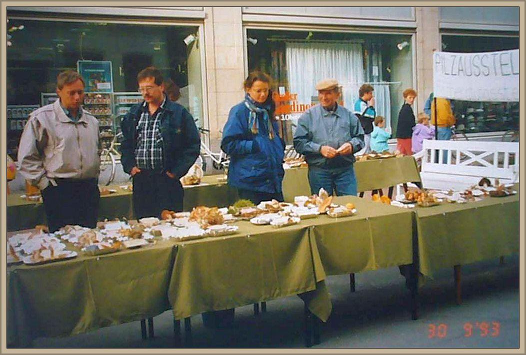 Ausstellung am 30.09.1993 auf der Fußgängerzone vor dem Karstadt Warenhaus in Wismar. Von links: Prof. Dr. Jürgen Schwik, Reinhold Krakow, eine Mitarbeiterin des Umweltamtes, dessen Namen mir leider nicht mehr geläufig ist und Gerhard Holst, Ornitolge und Storchenvatter des damaligen WismarA.