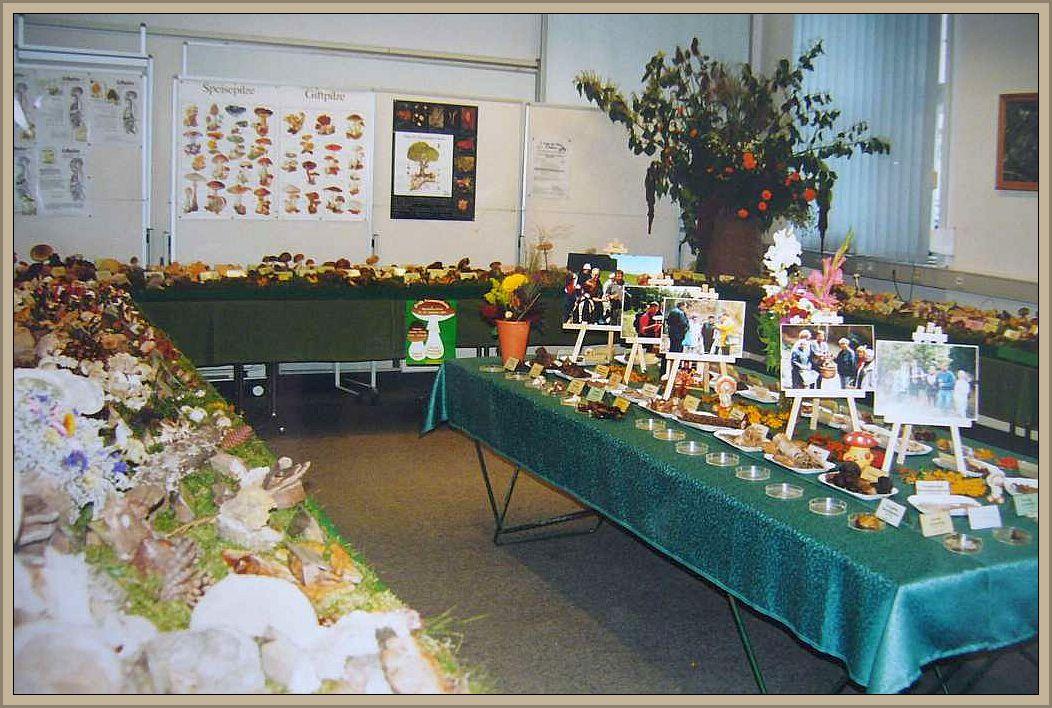 Pilzausstellung im Rathaus Wismar um das Jahr 200 herum.