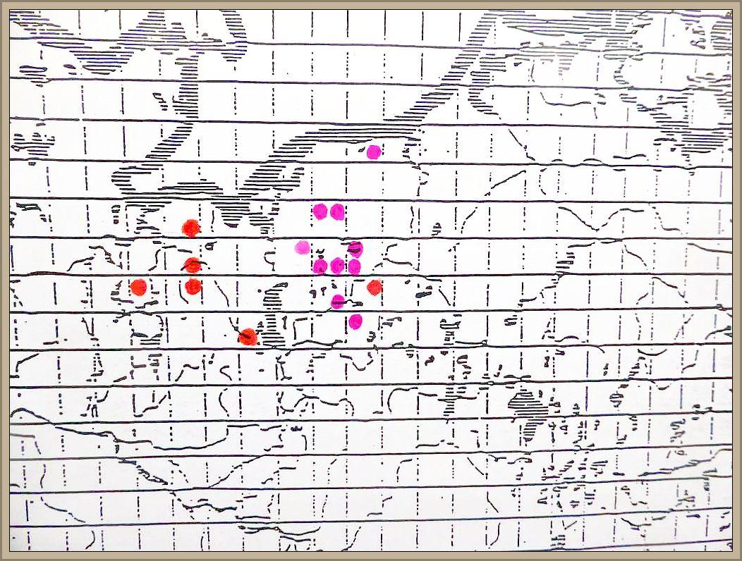 Diatrypella favacea (Fr.) Sacc. - Birken - Eckenscheibchen
