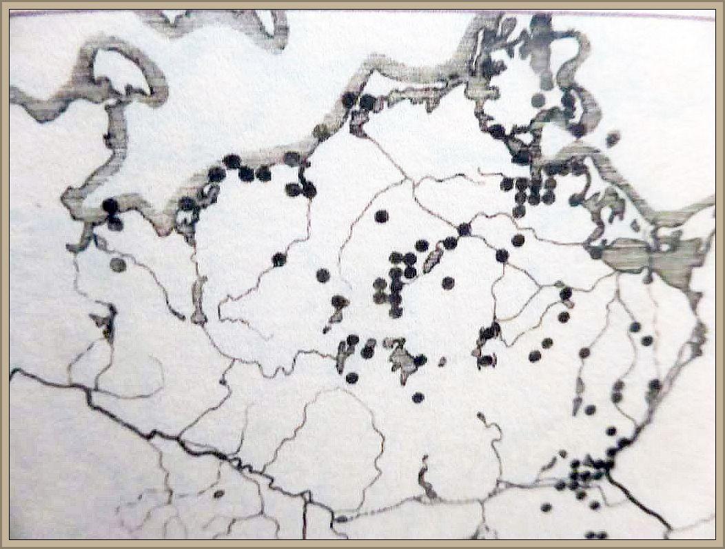 Verbreitungskarte des Judasohrs im Jahre 1980 in Mecklenburg - Vorpommern.